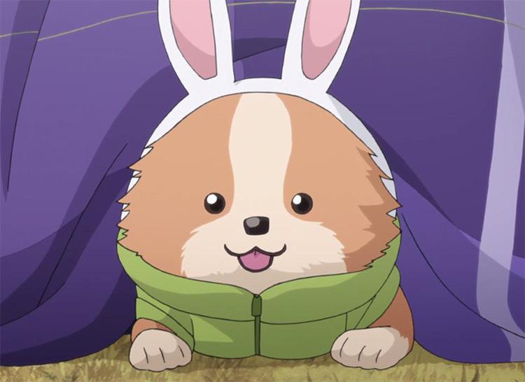 Chikuwa in Yuru Camp Anime