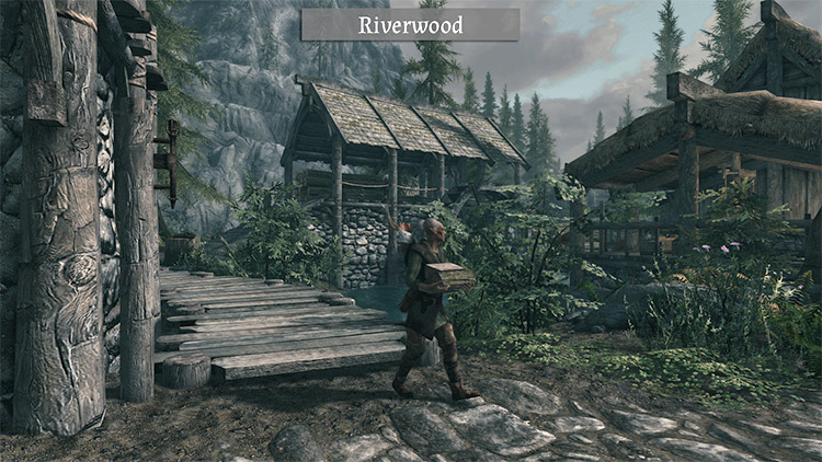 Expanded Towns and Cities for Skyrim