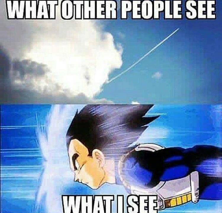 Vegeta flying DBZ meme