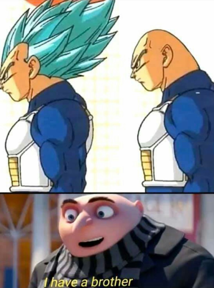 Vegeta bald brother meme