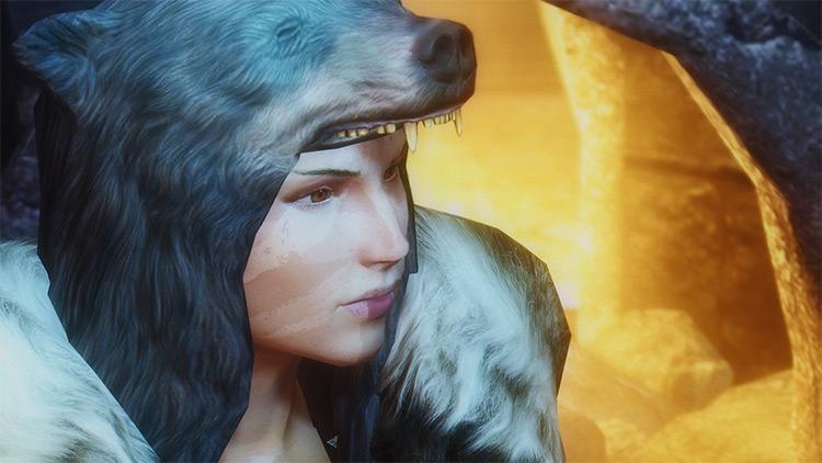 Wilds ENB for Skyrim
