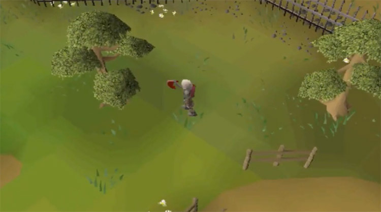 Cutting yew trees at the Woodcutting Guild in OSRS