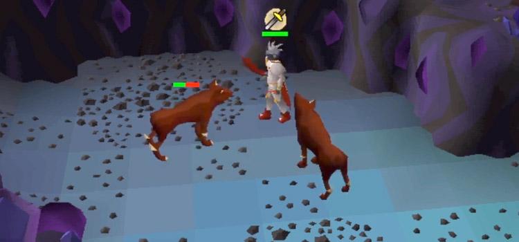 Hellhounds Battle in Old School RuneScape