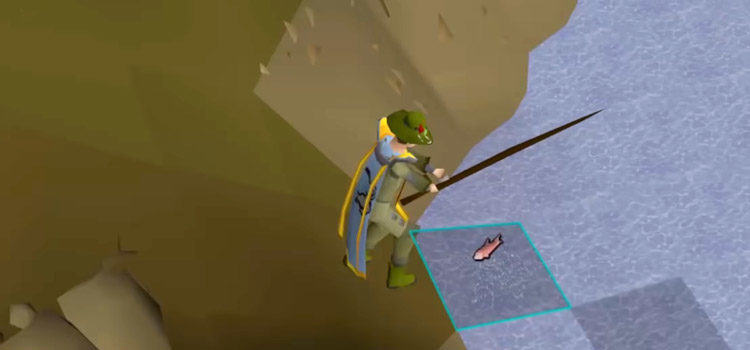 OSRS: Why Does My Character Randomly Stop Fishing?