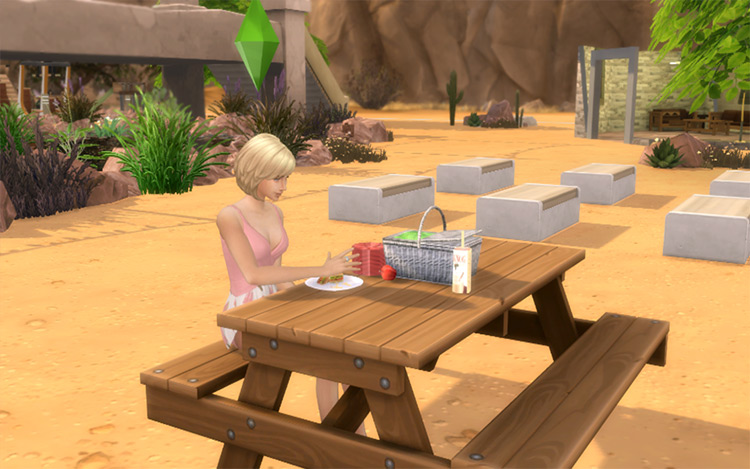 Functional Picnic Basket for Sims 4