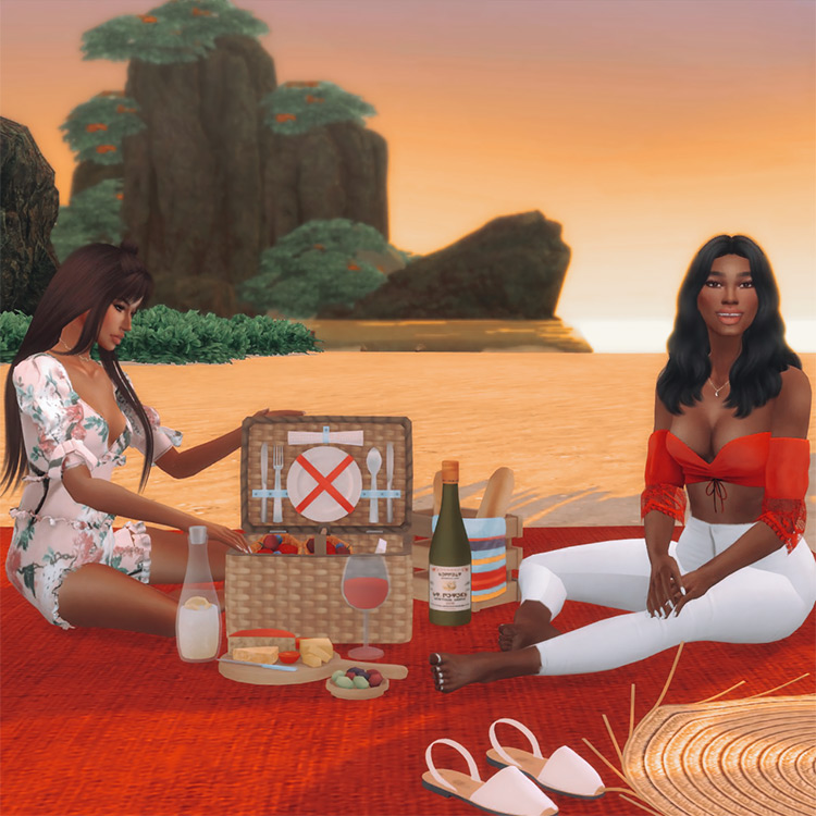 Picnic Poses Set #1 for Sims 4
