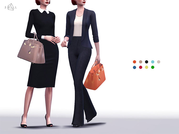 Birkin Handbag CC for The Sims 4