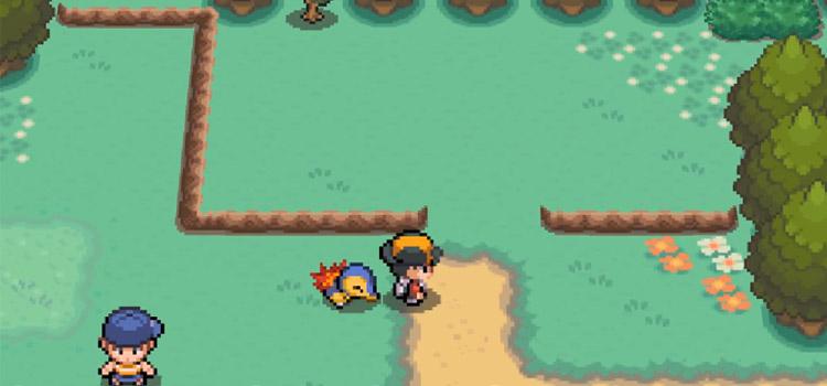 Pokemon HGSS Route 29 Screenshot