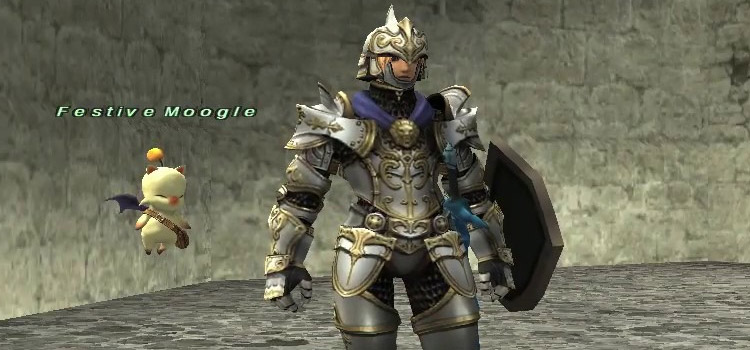 Paladin Geared Up in Final Fantasy XI
