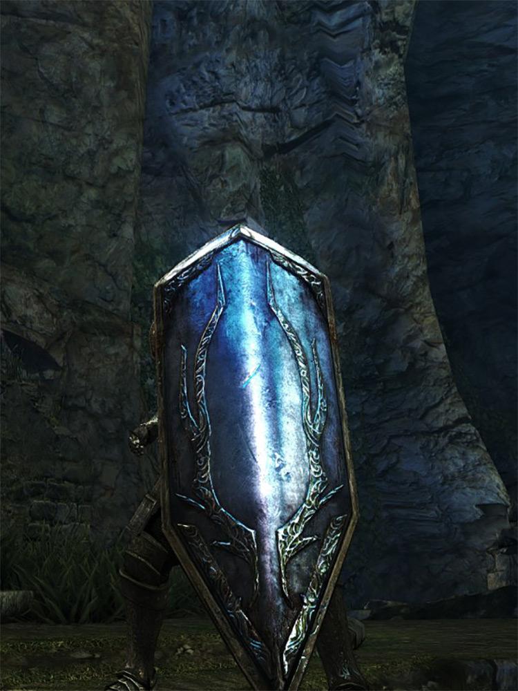 Giant Shield Dark Souls Remastered