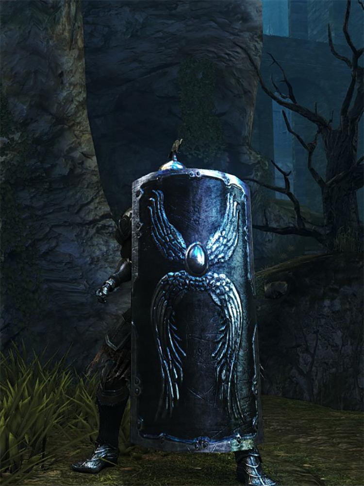 Tower Shield Dark Souls Remastered