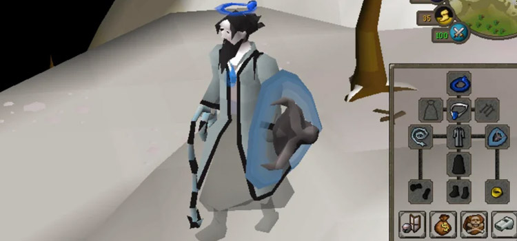 Robes with Ancient Wyvern Shield / OSRS Fashionscape
