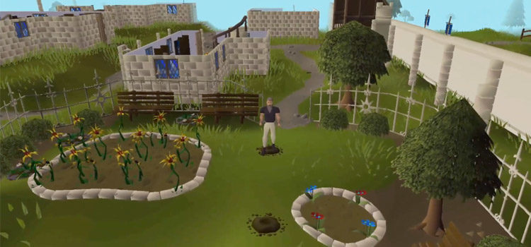 The 5 Best Ways To Get Seeds in OSRS
