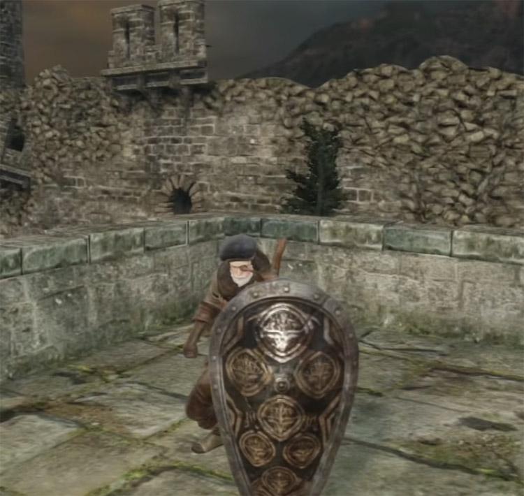 Dragonrider Greatshield in Dark Souls II