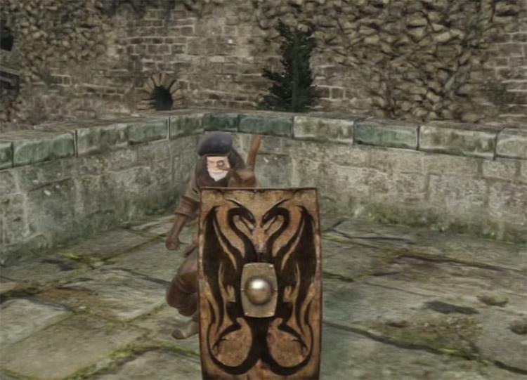 Twin Dragon Greatshield in Dark Souls II