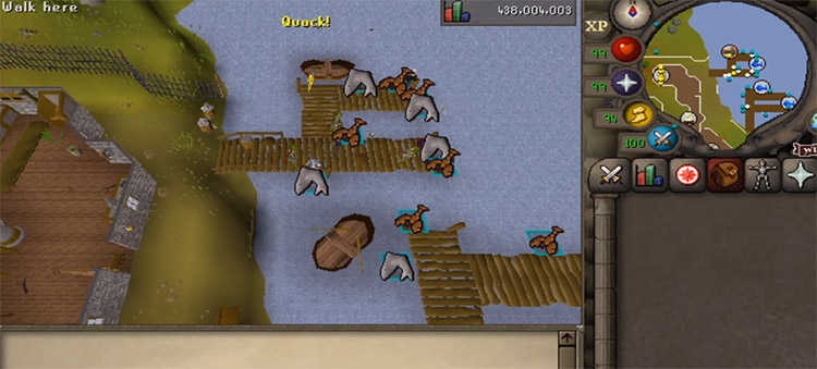 Harpooning Sharks at the Fishing Guild in OSRS