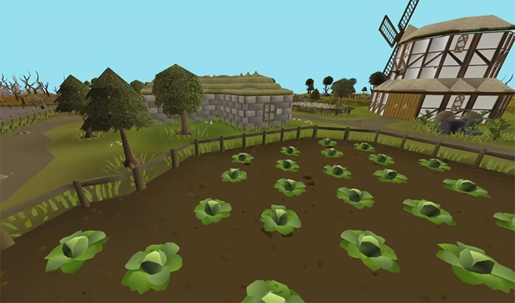 Herb field for herlbore in OSRS