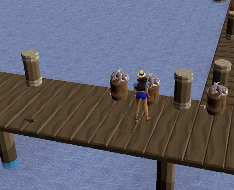 Piscarillius Docks for Fishing with favour / OSRS Screenshot