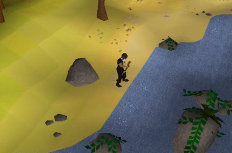 Catherby Harpoon Fishing Spot Screenshot in OSRS