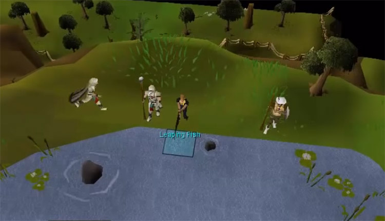 Barbarian fishing screenshot in OSRS