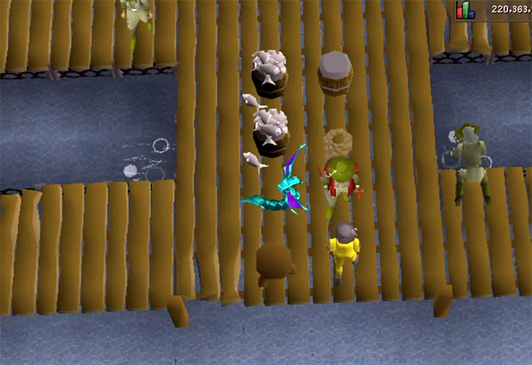 Minnow fishing screenshot in OSRS