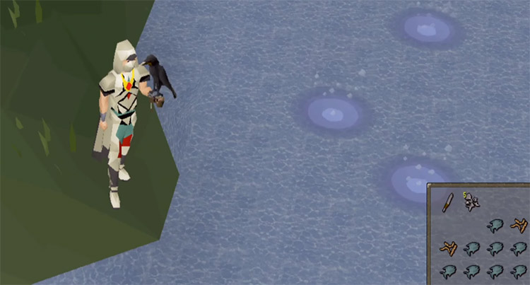 Aerial Fishing in OSRS