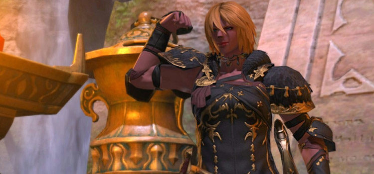 What Does Interject Do in Final Fantasy XIV?