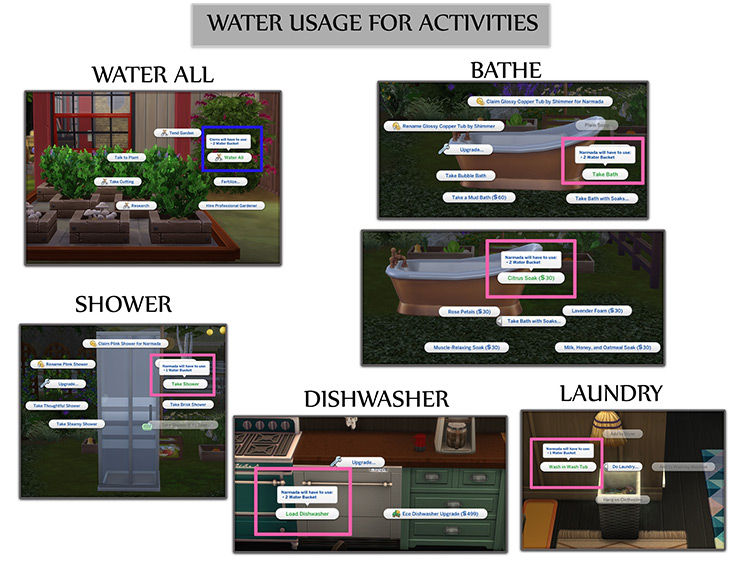 Functional Water Pump / TS4 CC