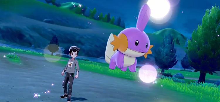 Shiny Mudkip in Pokémon SWSH