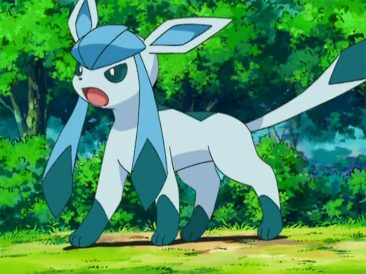Glaceon in Pokemon Anime