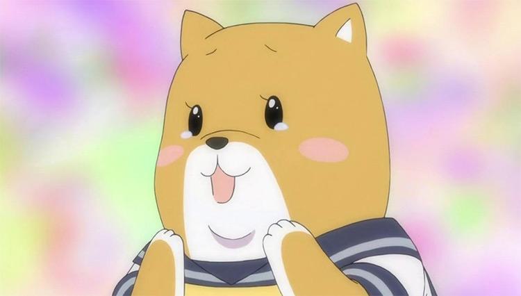 Shiba Inuko in Shiba Inuko-san anime