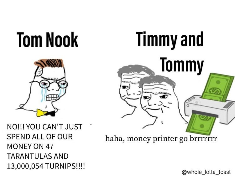 Tom and Timmy Nook meme