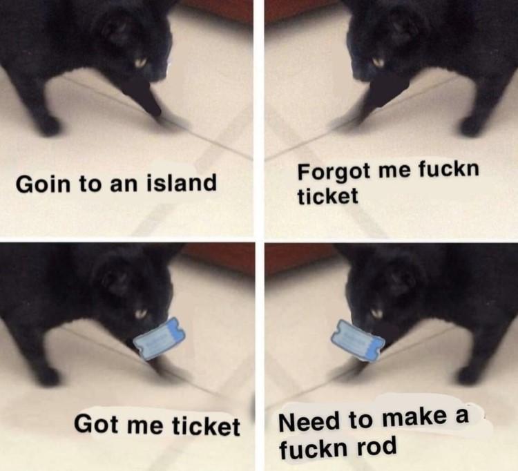 Cat meme Animal Crossing