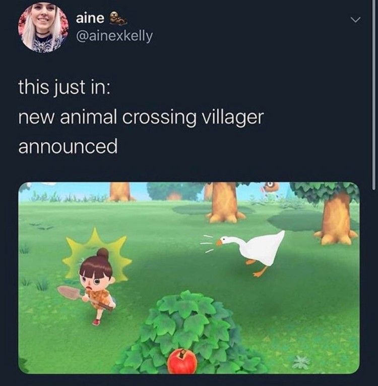 New duck animal crossing villager