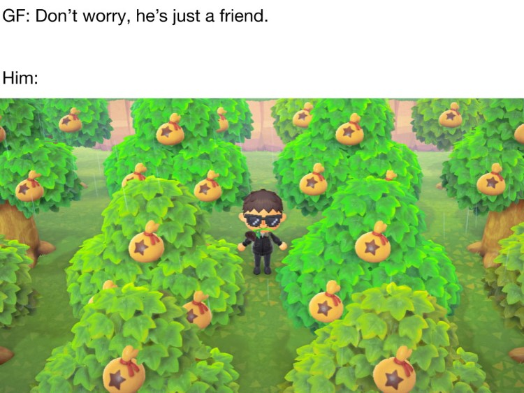 Hes just a friend Animal Crossing rich meme