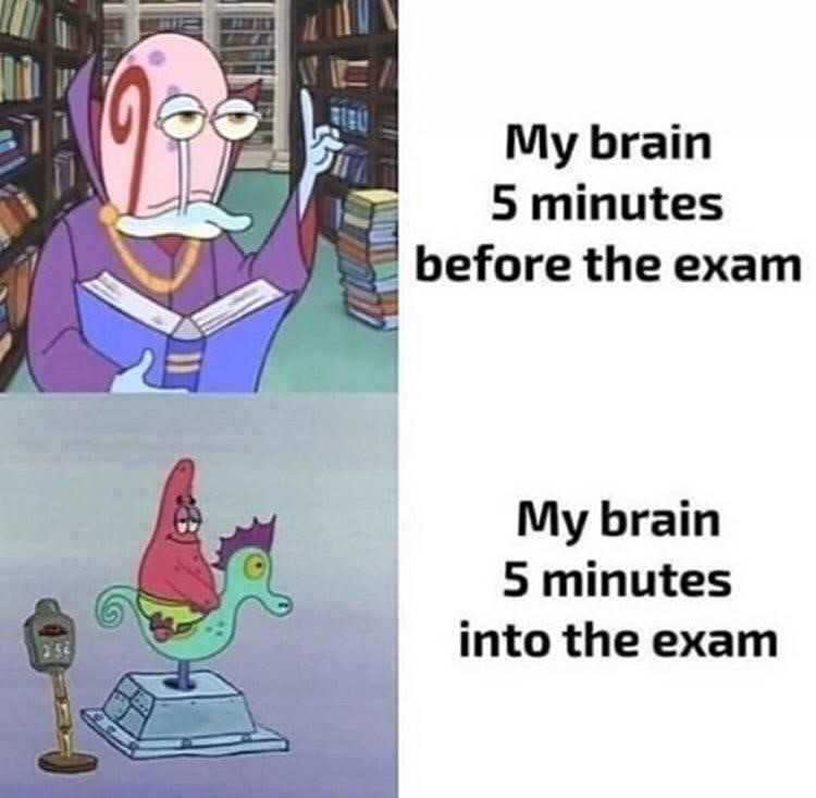 My brain before exam meme