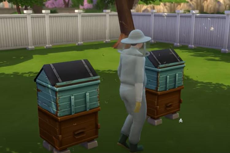 Beekeeper Aspiration mod