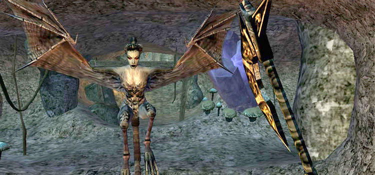 Morrowind cave battle screenshot