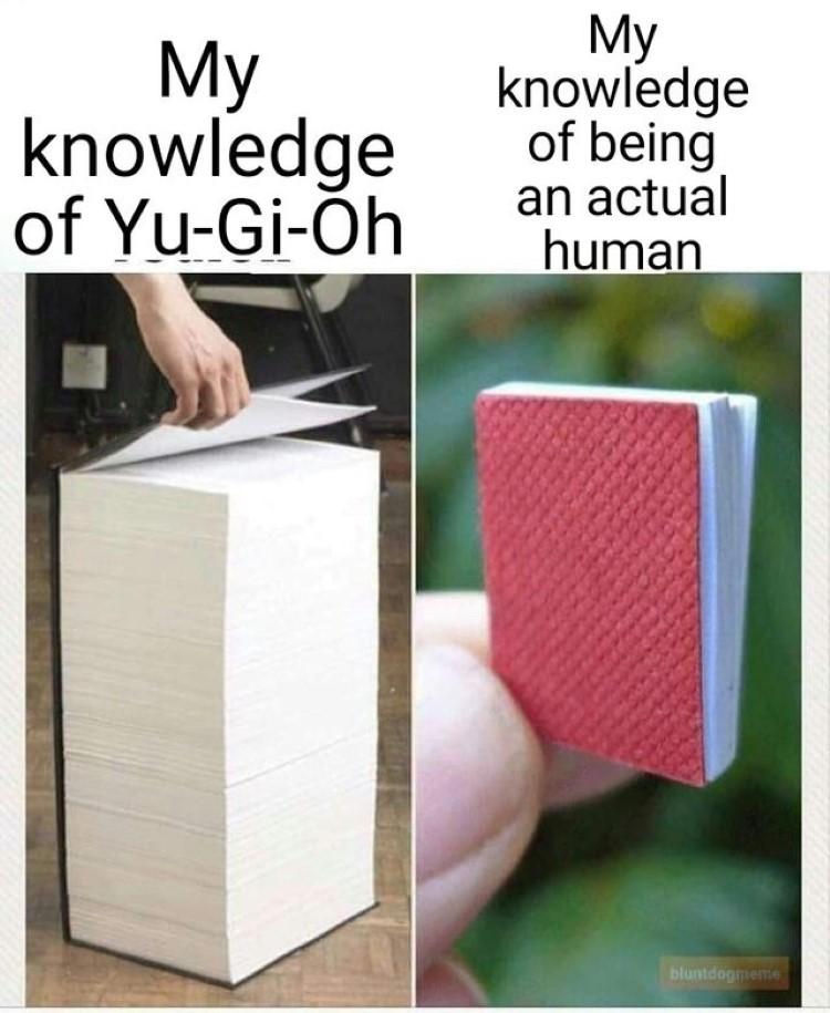 My Knowledge of Yu-Gi-Oh meme