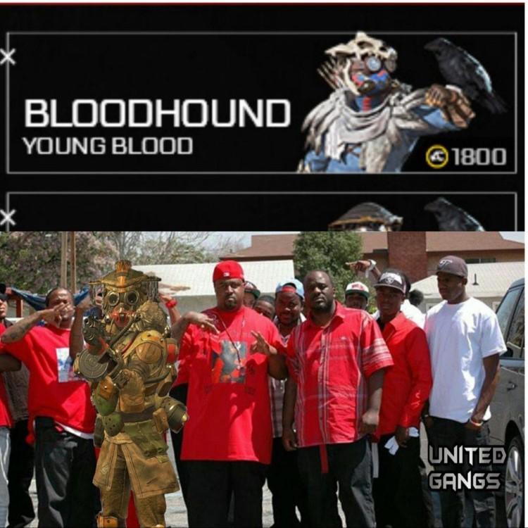 Bloodhound gang united meme