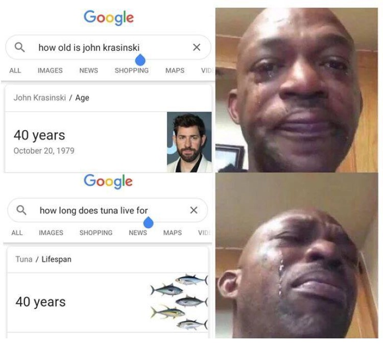 How long do tuna live Jim Halpert