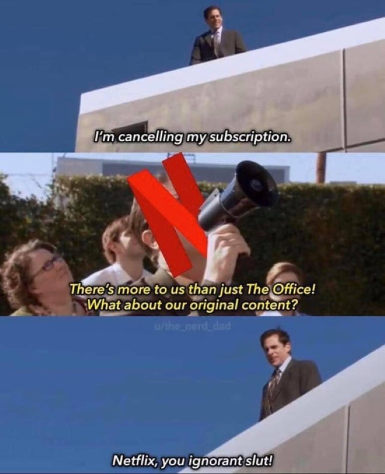 Cancelling Netflix joke