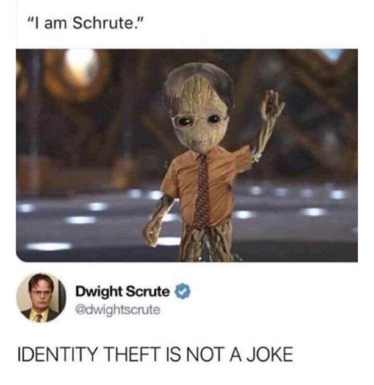 Identity theft is not a joke meme