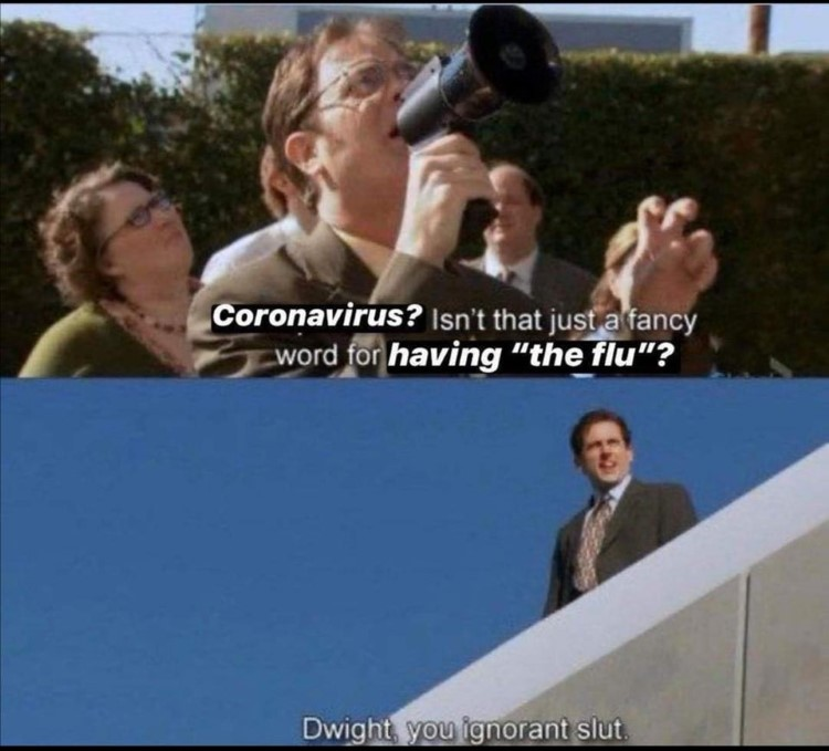 Corona Dwight you ignorant slut joke