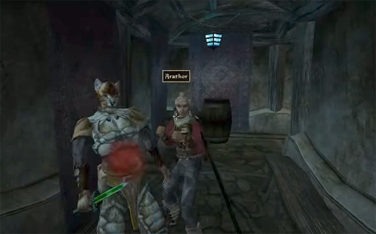 Remove the Heads of the Thieves Morrowind screen