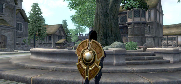 11 Best Shields in Elder Scrolls IV: Oblivion (And Where To Get Them)