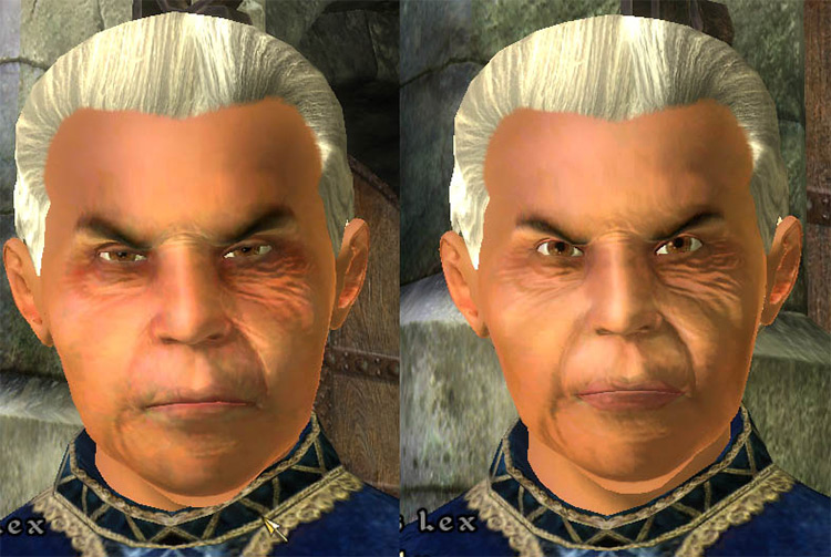 Natural Faces Oblivion mod
