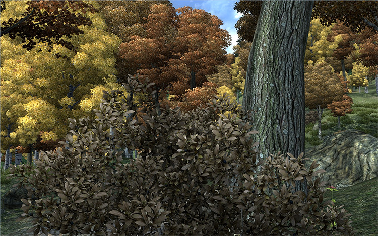 Improved Trees and Flora Oblivion mod