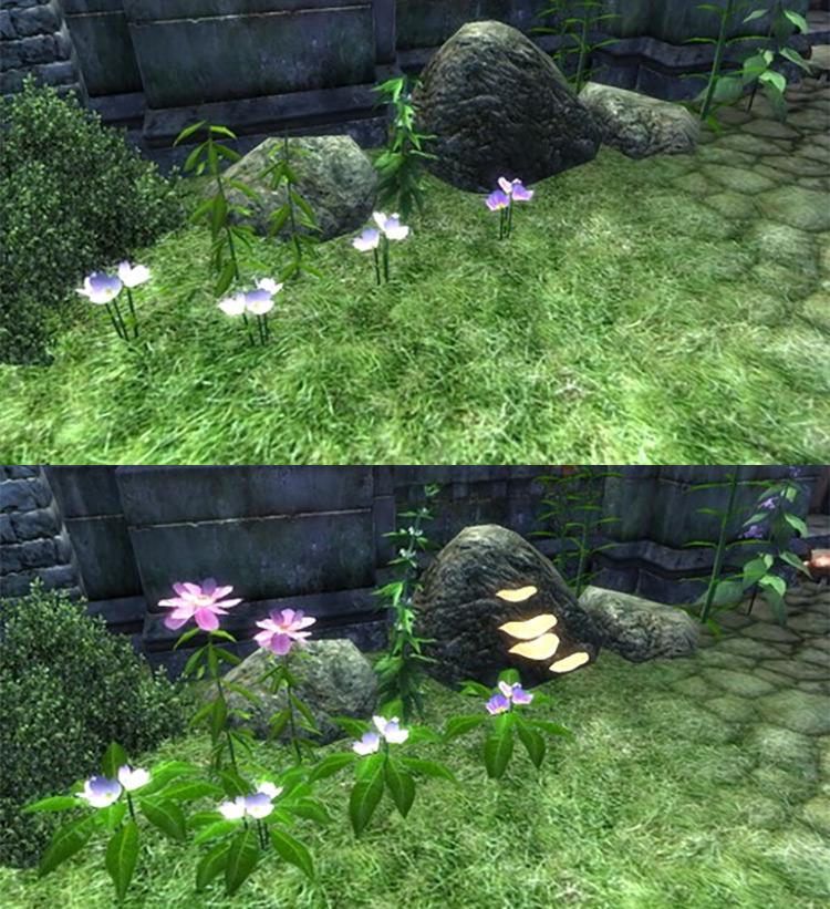 Harvest Flora Oblivion mod