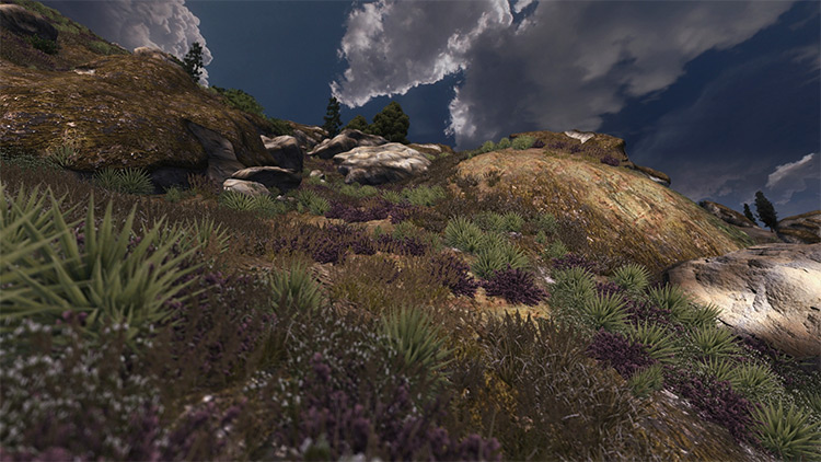 Oblivion Grass Overhaul mod